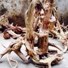Tìm hiểu về gỗ lũa, thú chơi gỗ lũa của các đại gia