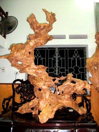 Cửa hàng nội thất gỗ quý lũa có giá trị nghệ thật phong thủy