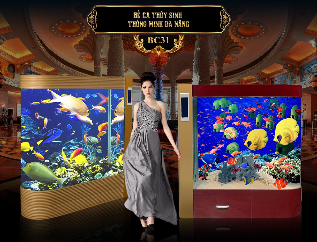 Banner bể cá thủy sinh, bể cá phong thủy đẹp