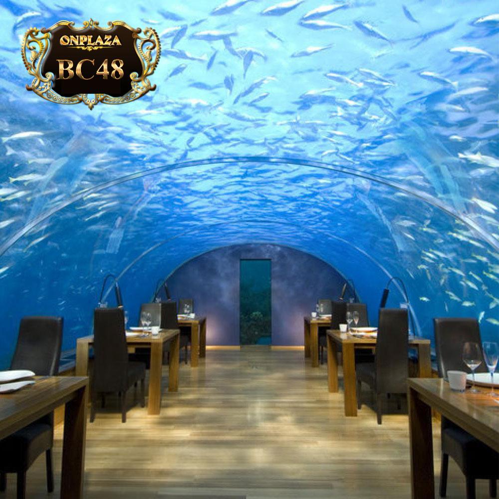 Bể cá thủy cung lớn (thiết kế theo yêu cầu) BC48