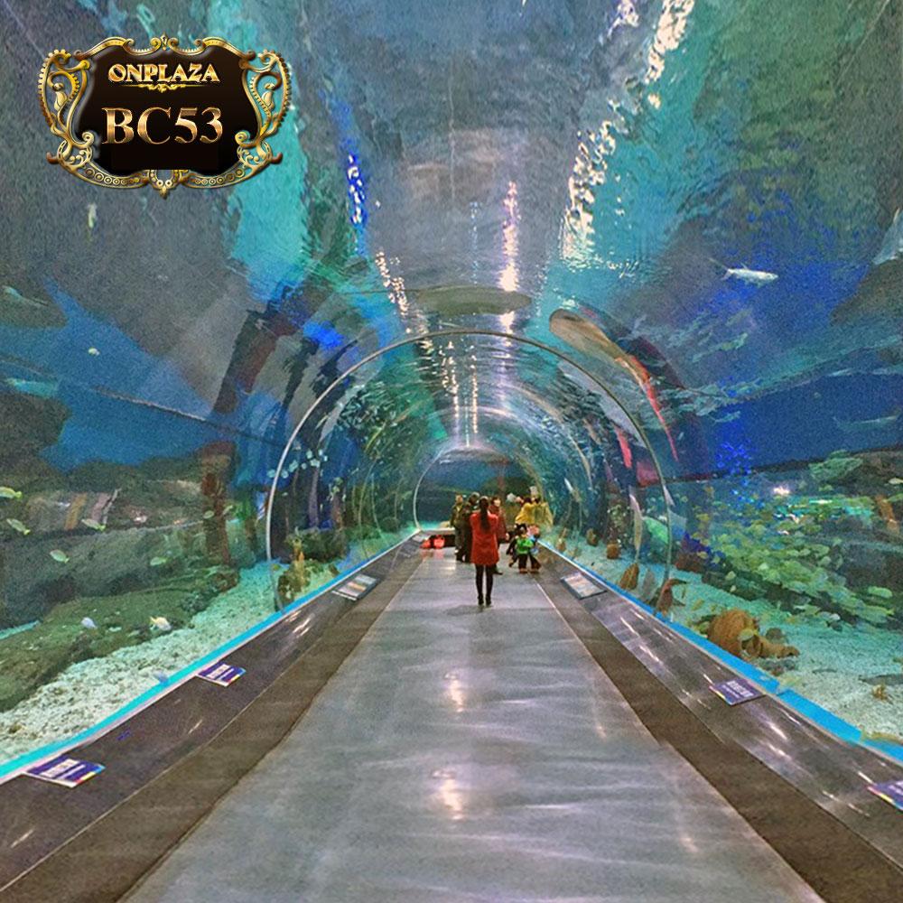 Hồ cá thủy cung (Thiết kế theo yêu cầu) BC53