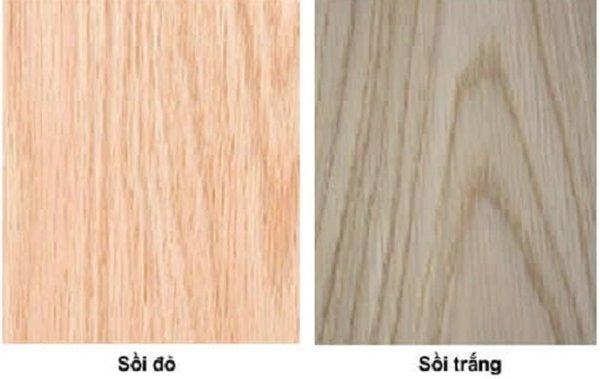 Cách phân biệt gỗ sồi trắng và gỗ sồi đỏ
